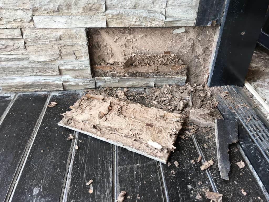 _termite-damage-behind-wall